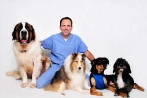 Increase-Your-Profits-Infusionsoft-Veterinarian-Success-Story